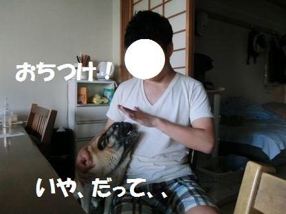 CIMG4121.jpg