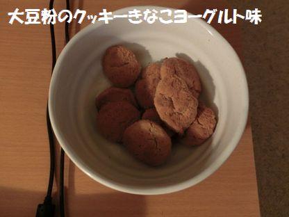 CIMG4265.jpg