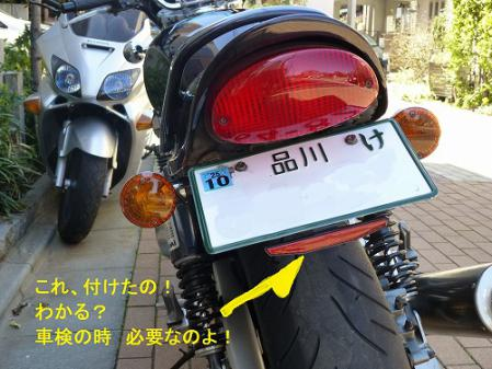 P1000981.jpg