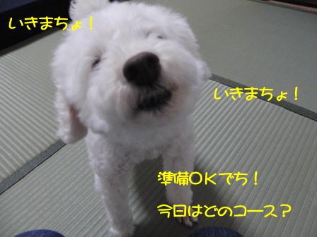 b102.jpg