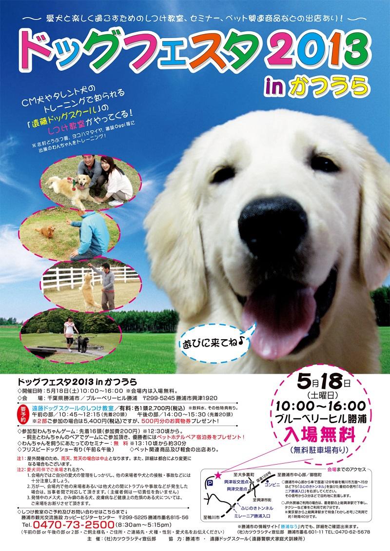 DogFesta2013_Katsuurass.jpg
