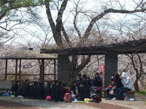 館山公園2013042805