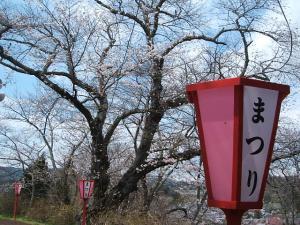 館山公園2013042802