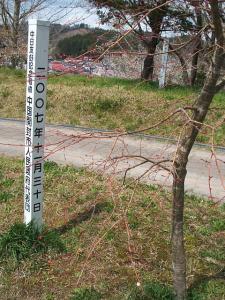 館山公園2013042809