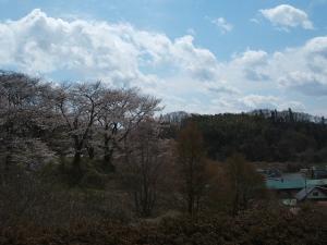 館山公園2013042813