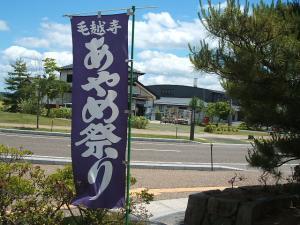 毛越寺あやめ祭り2013-06-22-090