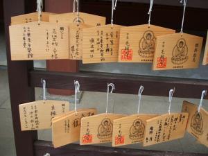 毛越寺あやめ祭り2013-06-22-007