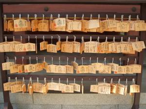 毛越寺あやめ祭り2013-06-22-005