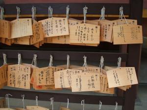 毛越寺あやめ祭り2013-06-22-006
