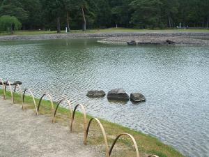 毛越寺あやめ祭り2013-06-22-012