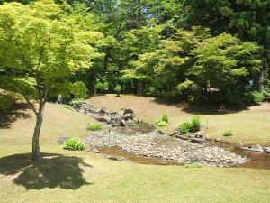 毛越寺あやめ祭り2013-06-22-056