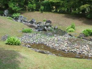毛越寺あやめ祭り2013-06-22-057