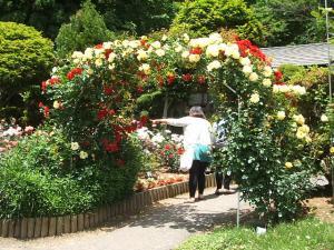 花巻薔薇園2013-06-23-067
