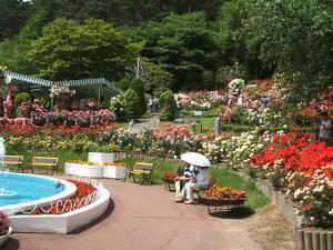 花巻薔薇園2013-06-23-153