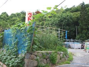 家庭菜園2013-07-14-016