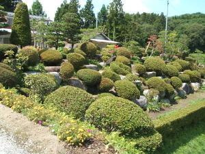 ふれあい花壇2013-08-27-041