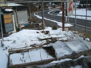 2014-01-13-001.jpg