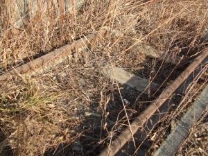 線路は続かない2014-01-26-228