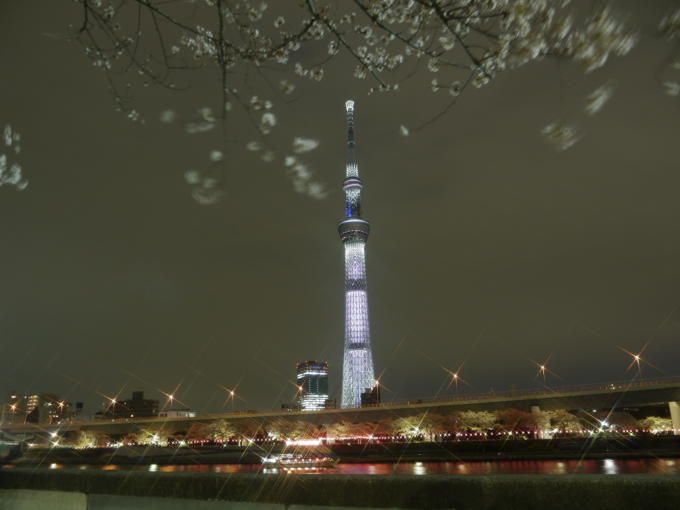 東京スカイツリー-桜01