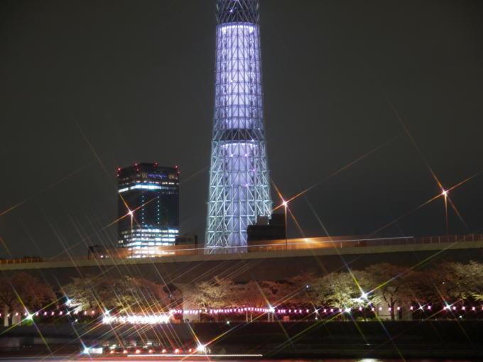 東京スカイツリー-桜04