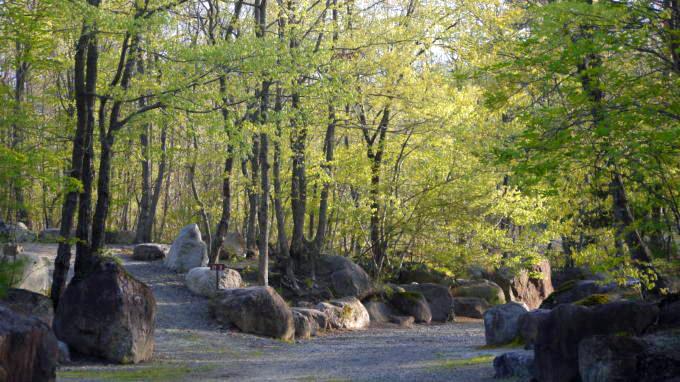 三景園-130501-11