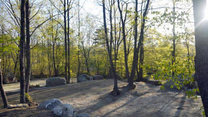 三景園-130501-12
