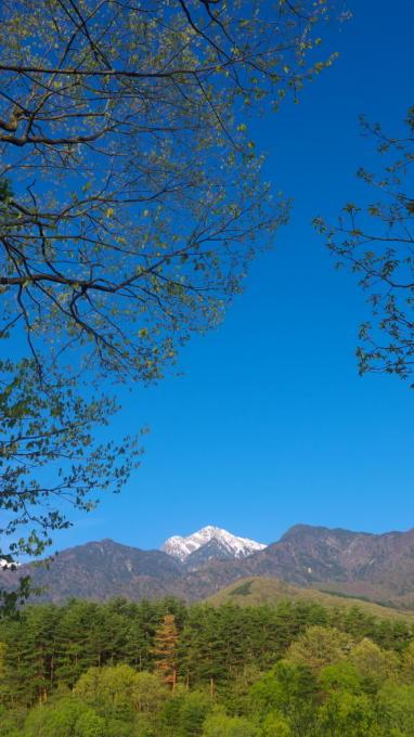 三景園-130501-15