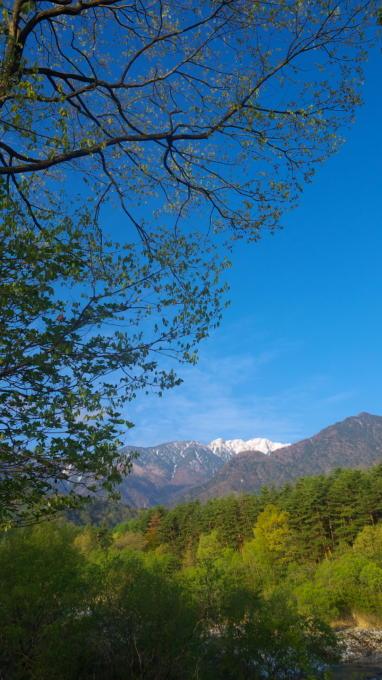 三景園-130501-16