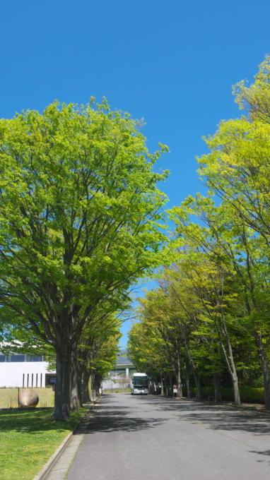 あさまの森201305-ワイナリー02
