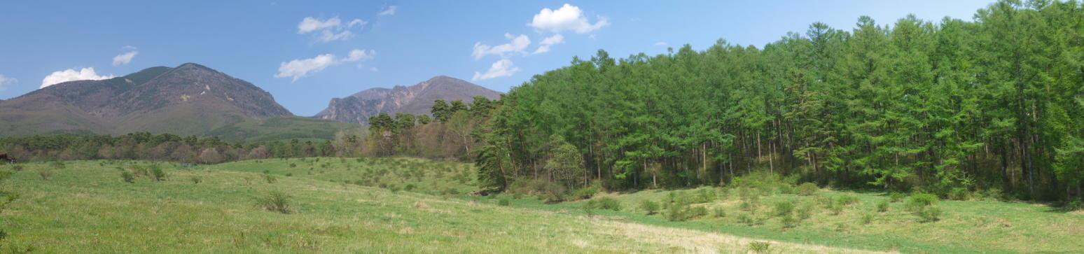 あさまの森20130513-牧場01