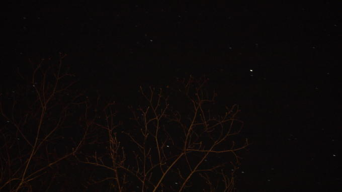 あさまの森20130513-星01