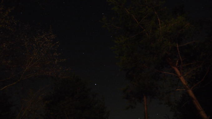 あさまの森20130513-星03