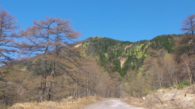 高峰温泉20130515-林道01