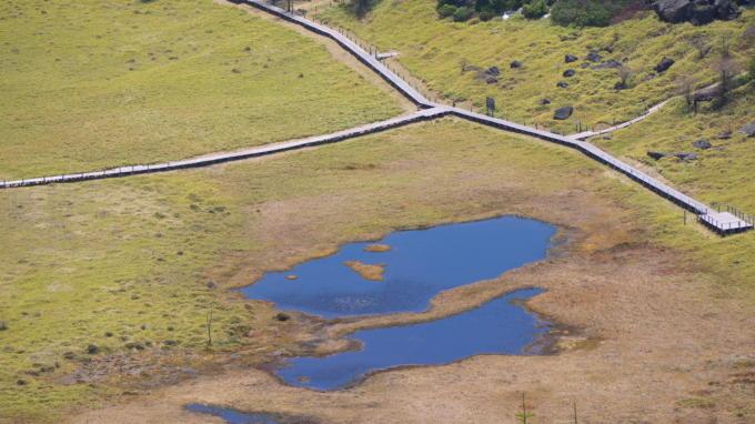 池の平湿原20130515-11
