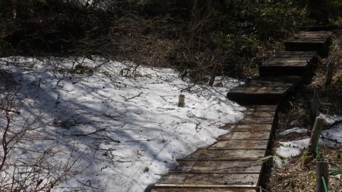 池の平湿原20130515-24