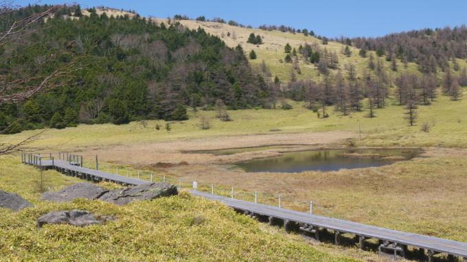 池の平湿原20130515-25