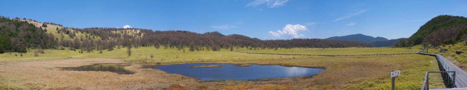 池の平湿原20130515-27