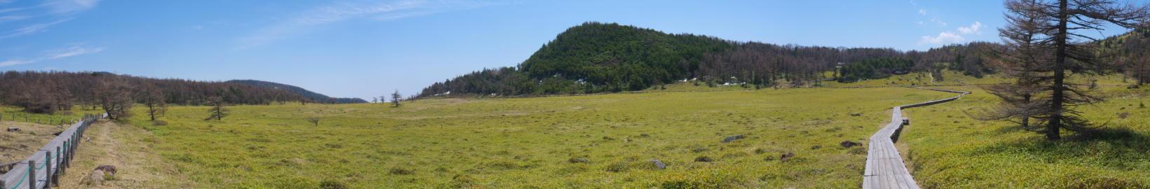 池の平湿原20130515-28