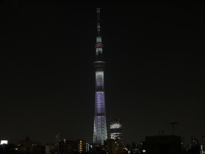 東京スカイツリー-咲