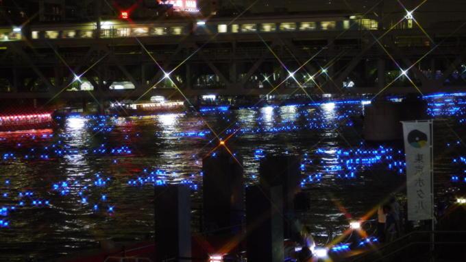 東京ホタル13