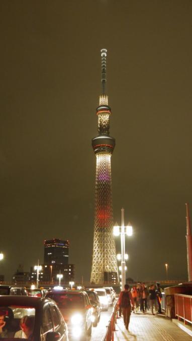 東京ホタル29