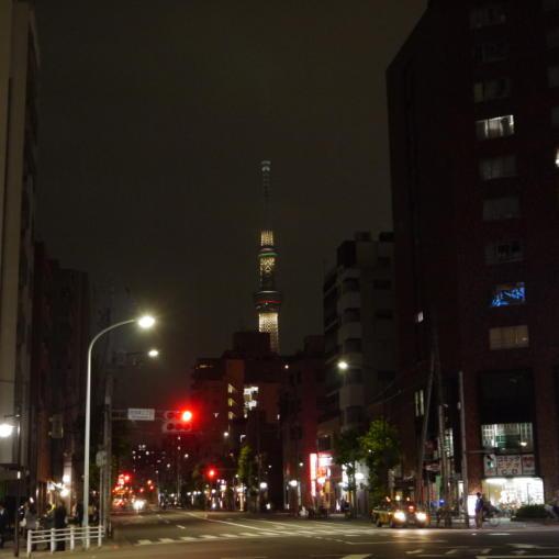東京ホタル36