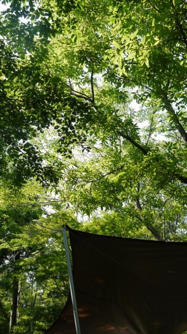 有野実苑-20130623-08