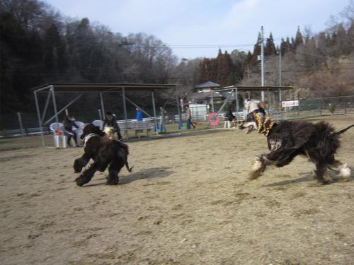 犬山ラン2-1-7
