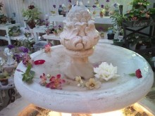 ~椎名町情報ブログ~-ハイジの村-バラ園噴水