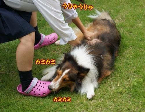 1-DSC00884.jpg