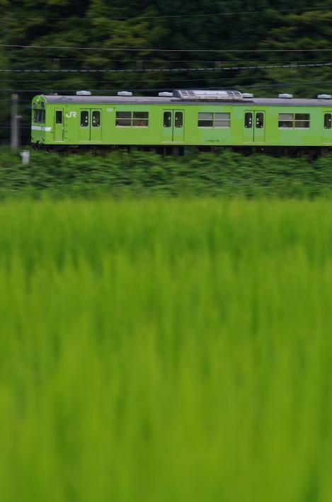 2014年08月20日~ 京都 038