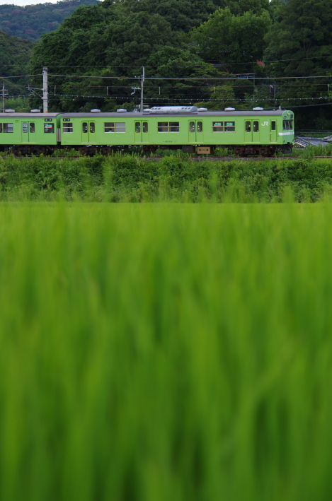 2014年08月20日~ 京都 034