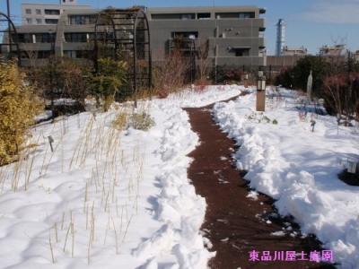 yuki11_20140209140620b3d.jpg