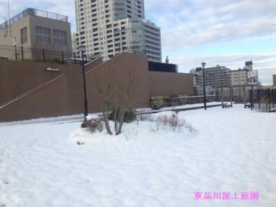 yuki1_20140209140544553.jpg